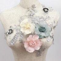 3D Blumen Spitze Stickerei Braut Applique Tüll DIY Hochzeitskleid Kleidung Nähen