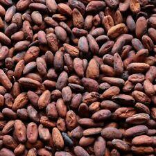 4 oz Raw Cacao / Cocoa Beans Chocolate Organic Arriba Nacional Bean