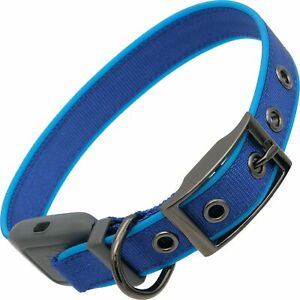 Nite Ize NiteDog Rechargeable LED Collar, USB Dog Collar w/Metal Buckle