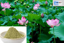 DR T&T ™ 500g Dried he ye lotus leaf folium nelumbinis Powder
