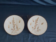 MIDWINTER stoneware WILD OATS, 2 cereal bowls, lotCe1