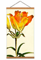 Flower Lily Orangepetals Canvas Wall Art Print Poster Magnetic Hanger 24x12 Inch
