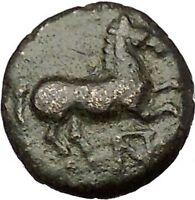 Maroneia in Thrace 400BC Original Ancient Greek Coin Horse Vine Grapes  i54138