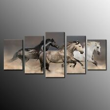 FRAMED Canvas Horse Painting Animals Picture Print For Living Room Wall Art 5pcs
