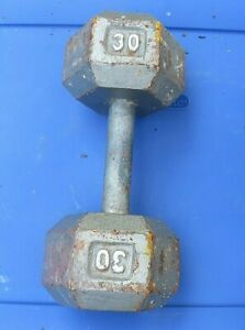30 Pound Dumbbell (1) 30lbs Dumbbell Free Weights Hex Cast Iron Weight Silver