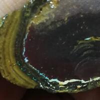 Pretty Uncut 183.45CT +VIDEO Australia Queensland NUT Boulder Opal ROUGH / RUB