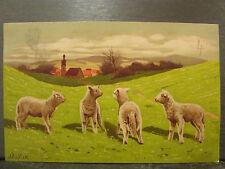 cpa fantaisie moutons agneaux paysage