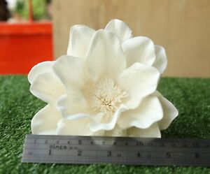 5 Magnolia 10 Dia. No Pollen Diffuser Flowers Sola Balsa Wood Wholesale Bouquet