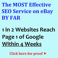 NEXT GEN 2.0 SEO SERVICE – PAGE 1 OF GOOGLE WITHIN WEEKS (NOTHING RANKS FASTER)