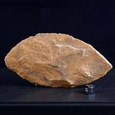 Biface feuille de laurier 14 cm Néolithique Ethnographie Afrique