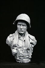 200mm 1/9 bust PFC, US Army 25th Infantry Division, Vietnam