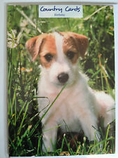 Terrier Dog  Birthday Card