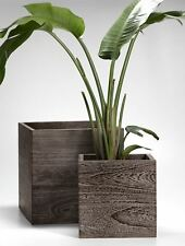 Kiri Wood Cube Planter, Soothing Design with Rich Wood Tones, Set of 2