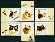 2006 Cats,Siamese,Persian,Turkish,Birman,Ragdoll,Norvegian,Romania,6022,IMP.,MNH