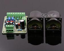 Une paire de niveau sonore/db level meter + TA7318P vu d'en-tête driver board