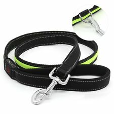 Auraglow LED light-up dog lead glowing safety leash visibility for night walks