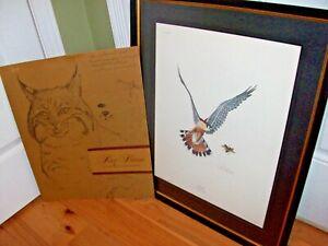 Ray Harm Print Lithograph 1967 Hawk Bird Kestrel Falco Sparverius Framed