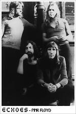 PINK FLOYD Echoes 24 x 36 David Gilmour ROGER WATERS Large POSTER