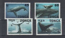 D. Fish - Marine Life Tonga 1400 - 03 Whales (MNH)