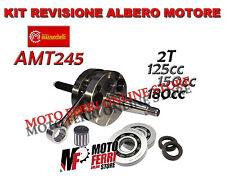 Mazzucchelli AMT 245 Albero Motore con Biella Cromata - Argento