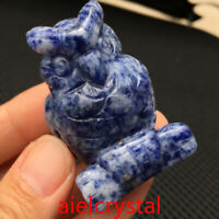 Natural sodalite quartz owl skull Hand Carved sculpture crystal healing1pc