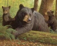 "Bearly Keeping Up Bear Cubs Cotton Fabric Panel Digitally Printed 35"" x 44"""