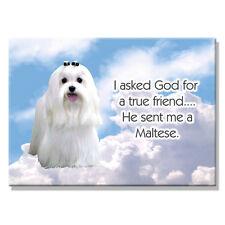 MALTESE True Friend From God FRIDGE MAGNET New DOG
