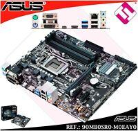 PLACA BASE ASUS PRIME INTEL CHIPSET B250 LGA CPU SOCKET 1151 DDR4 OPTANE 64G RAM