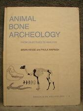 Animal Bone Archaeology From Objections to Analysis Brian Hesse Wapnish Skeleton