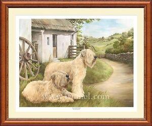 IRISH SOFT COATED WHEATEN limited edition art print