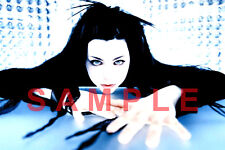AMY LEE 12x18 EVANESCENCE BAND POSTER FALLEN SYNTHESIS BEN MOODY THE OPEN DOOR 4