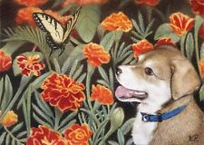 puppy butterfly flowers marigolds aceo limited edition art print animal dog KR