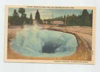 Yellowstone National Park,MORNING GLORY POOL Postcard-Haynes #16049,1940's