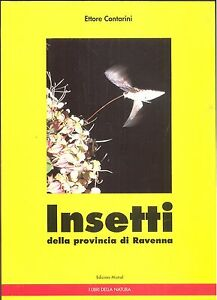 Contarini: Insetti della provincia di Ravenna