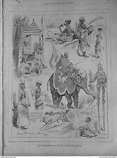 1886 GIV8 GARTEN AKKLIMATISIERUNG SINGHALESISCH EINGEBORENEN ELEFANT ZEBUS