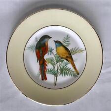 Vintage Elizabethan Bone China Plate Salad Dessert Plate Songbirds Yellow Rim UK