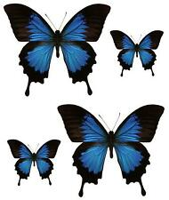 4x sticker adesivi adesivo pc wall auto moto farfalla farfalle blu murali
