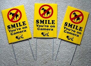 """3 NO DOG POOP - SMILE YOU'RE ON CAMERA 8""""X12"""" Plastic Coroplast Signs w/Stakes y"""