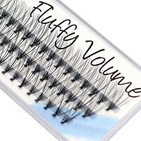 Individual Mink Cluster Lashes EyeEnvy Fluffy Volume DIY Extensions Flare Party