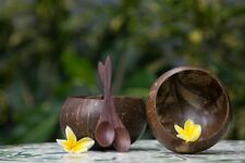 Jazz it up with a coconut! Handcrafted coconut shell bowl and spoon set