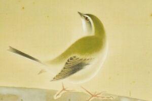"JAPANESE HANGING SCROLL 60.2"" PAINTING Nightingale Antique VINTAGE Japan c224"