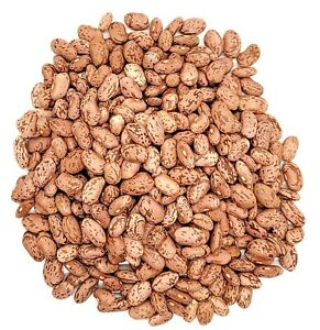 Organic Pinto Beans- Triple Cleaned - 5 pounds - Free Shipping