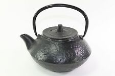 24 fl oz Black Coins Japanese Cast Iron Teapot Tetsubin with Infuser Filter