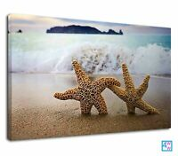 Lovely Starfish Couple Into The Sea Beach Canvas Print Wall Art Picture