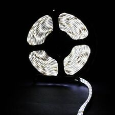 5M 300 / 600Leds 5050 / 3528 SMD Flexible LED Strip Light Natural Daylight White