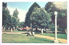 QUEEN'S PARK GARDENS, SHEPPARTON coloured postcard c1950s