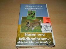 Paul Parey präsentiert: Steckbrief natur - Hasen & Wildkanninchen -  VHS - NEU