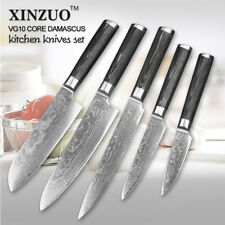 Kitchen Knives Knife Set Damascus Steel 73 Layers Chef Cleaver Utility Peel Bone