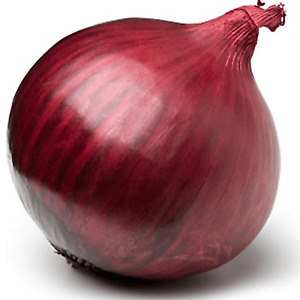 30 Giant Sweet Red Onion Seeds Pack UK Harvest Plants Grow Vegetables