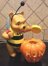 """12 x 12"""" WINNIE-THE-POOH Halloween Electric LIGHT UP Hunny Lantern Bee Outfit"""